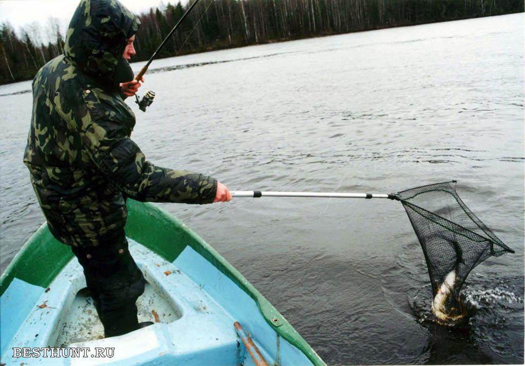 правила ловли корюшки в ленинградской области в 2017 году
