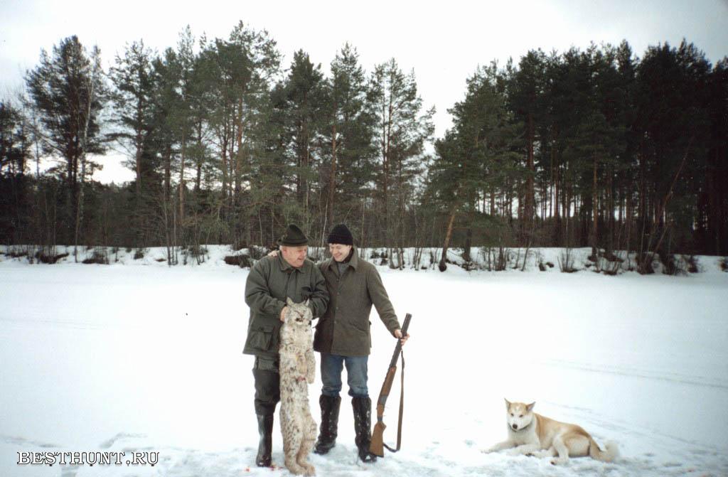 http://www.besthunt.ru/photos/hunting/lynx/big/lynx%288%29.jpg